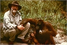 Terry Pratchett's Jungle Quest